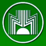 ПАО «ДЗЭО» - логотип
